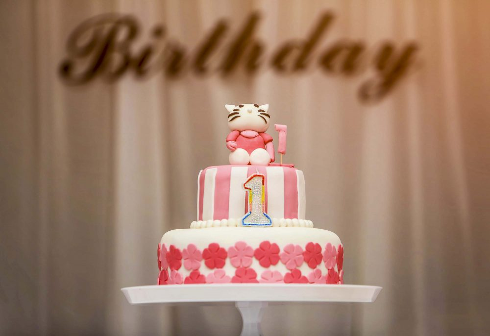 Stesta's 1 st Birthday