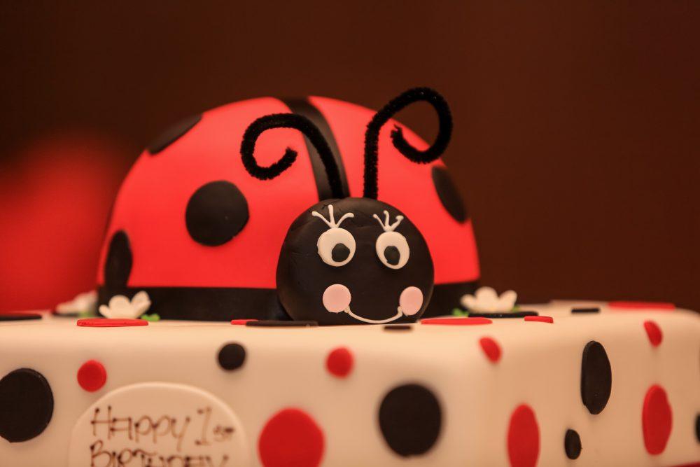 Gia's 1st Birthday